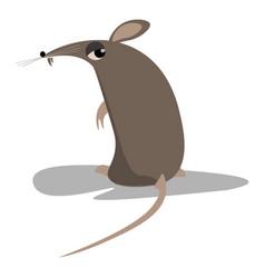 A black rat or color vector