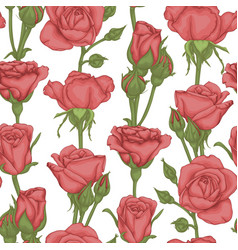 beautiful vintage seamless pattern with rosebuds vector image