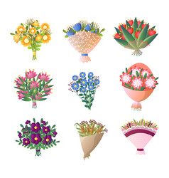 colorful fresh flowers bouquet set isolated on vector image