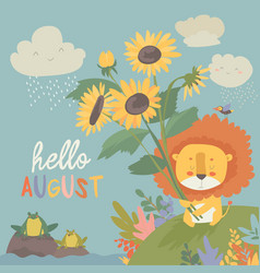 cute little lion with sunflowers hello august vector image