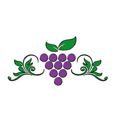 Stylized grapes leaves wine design element for vector