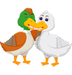 sweet geese couple cartoon embarce vector image