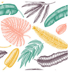 tropical plants seamless pattern background with vector image