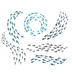 small fish groups vector image vector image