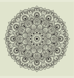 beautiful ethnic mandala with a floral pattern vector image