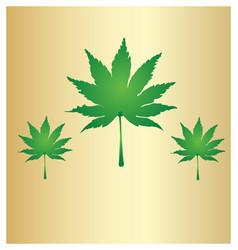 Cannabis leafs marijuana background vector