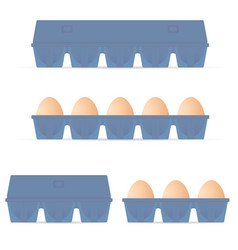 egg in blue box set colored vector image
