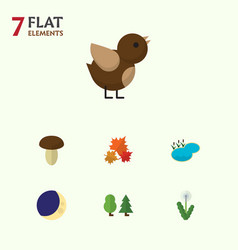 flat icon natural set of canadian bird floral vector image