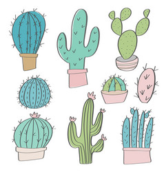 hand drawn cactus set doodles vector image