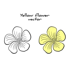 Isolated Yellow Flower vector image