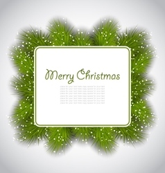 Merry Christmas elegant card with fir branches vector