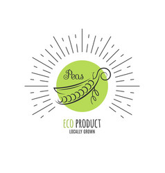 peas logo on white nature garden background vector image