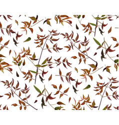 seamless pattern leaf red orange yellow green vector image