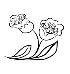 Sketch line drawing of flower vector image