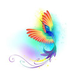 splendid rainbow hummingbird vector image