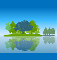 trees silhouette with reflection in water flat vector image