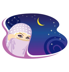 arabian night vector image vector image