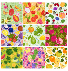 fruit pattern seamless fruity backdrop and vector image