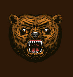 grizzly brown bear screaming mad animal for vector image