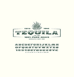 Ornate serif font and label template for tequila vector