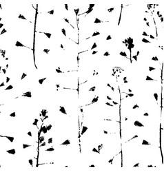 paint capsella bursa pastoris for design use vector image