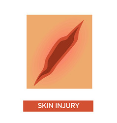 Skin injury scratch or deep cut medicine and vector