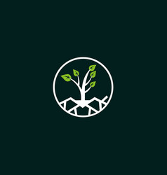 tree plant naturally creative business logo vector image