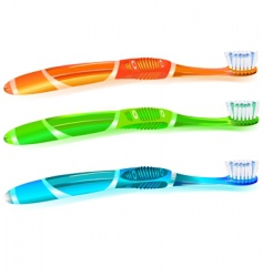 colorful toothbrush vector image vector image