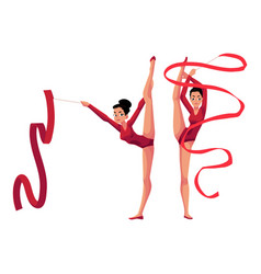 rhythmic gymnasts in leotards vertical leg split vector image vector image