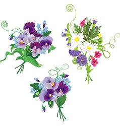 Set of holidays bouquets with chamomiles pansies vector image