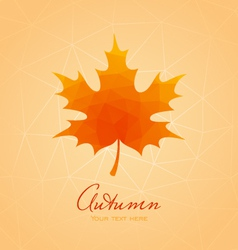 Abstract background with maple leaf vector image