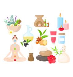 ayurveda medicine cartoon set ayurvedic vector image