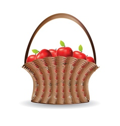 Basket red apples vector