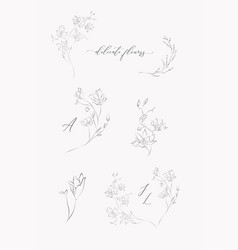 Collection line drawing floral wreaths vector
