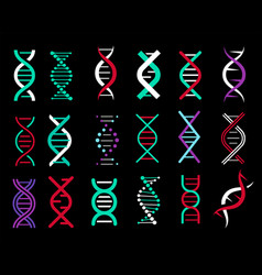 dna genetic sign elements pictograph vector image