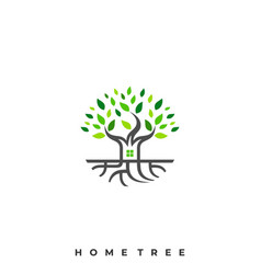 home tree template vector image