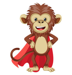 monkey with red cape on white background vector image