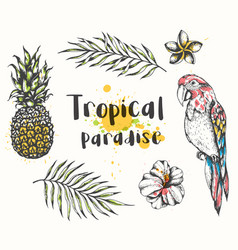 parrot and tropical plants vector image