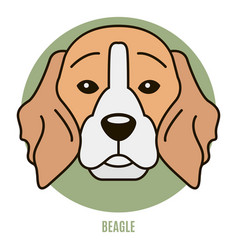 Portrait of beagle vector