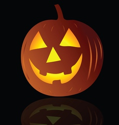 pumpkin on black background vector image