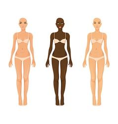 female models vector image