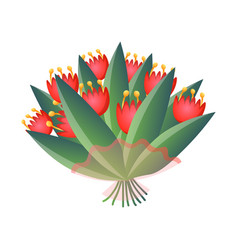 Fresh red bloomy tulips bouquet in transparent vector