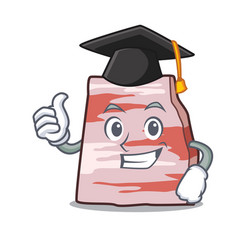 Graduation pork lard character cartoon vector