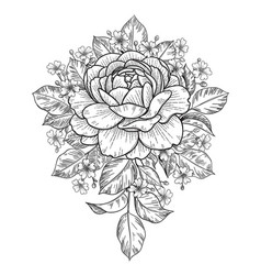 Hand drawn floral bunch with rose and small vector