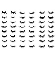 Set female eyelashes collection false vector