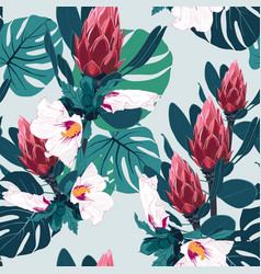 tropical leaves and exotic protea and hibiscu vector image