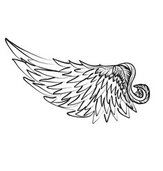 Wing on white vector