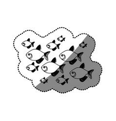sticker silhouette set collection fish aquatic vector image