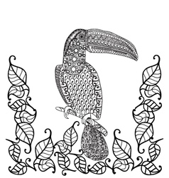 Toucan bird Anti-stress coloring book for adults vector image