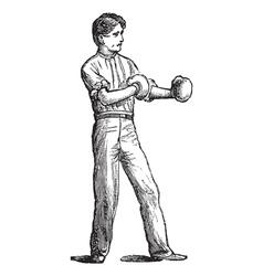 Vintage Boxer Sketch vector image